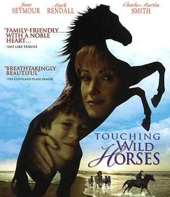 Animal Tales: Touching Wild Horses